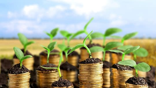Coins in soil with young plants on blurred background. Passive income-generating property concept.